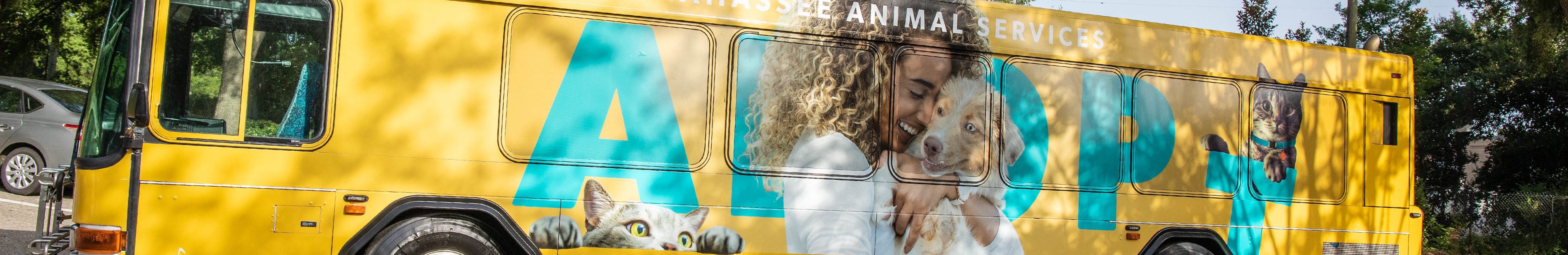 Animal Services | Animal Services