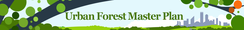 Urban Forest Master Plan