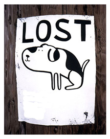 Lost pet poster