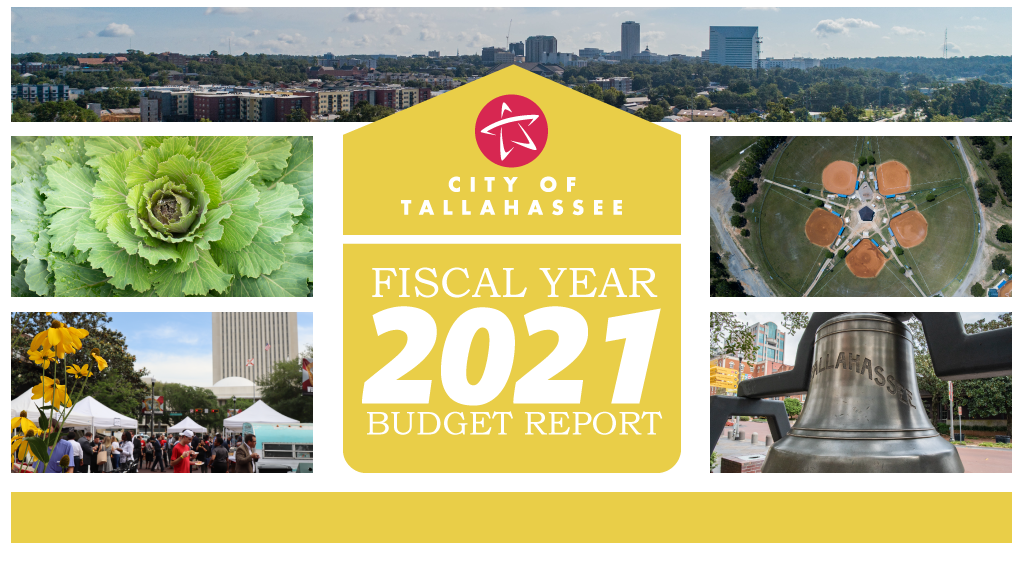 Fiscal Year 2021 Budget Report